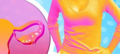 Sve o ovulaciji - 15 činjenica koje će vam pomoći da zatrudnite ili da izbegnete trudnoću