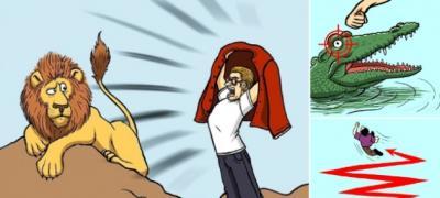 Zmije, ajkule, lavovi: 8 tehnika koje će vam pomoći da preživite susret sa opasnom životinjom