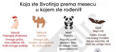 Koja ste životinja prema mesecu rođenja?