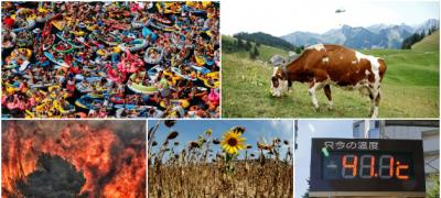 11 foto dokaza koji pokazuju kako toplotni talas utiče na svet i prirodu