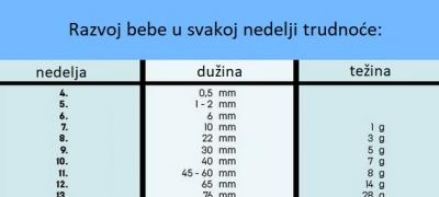 Kalendar za trudnice: Prosečna dužina i težina bebe u svakoj nedelji